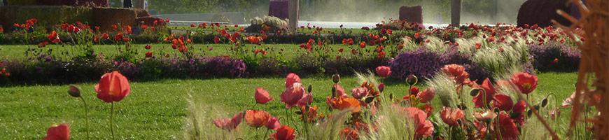 Jardin paysager Nantes